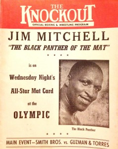 The Black Panther Jim Mitchell